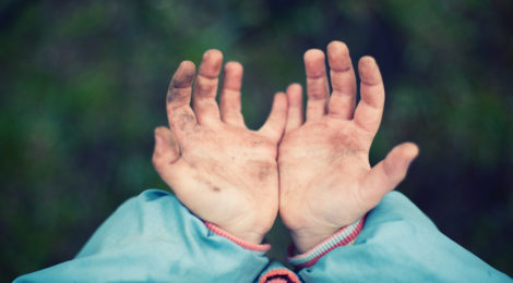 To Prevent Illness: Love, Stress, and Microbes