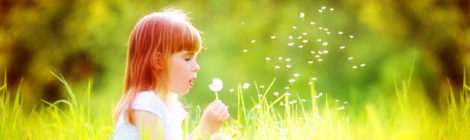 7 Steps to Naturally Conquer Allergies